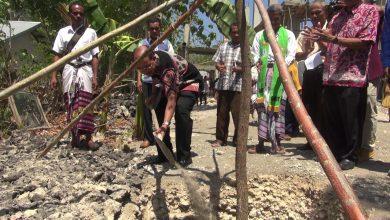 Photo of Sambut Gerakan Kupang Hijau, PKBS GMIT Luncurkan Gerakan Satu Bapak Satu Pohon